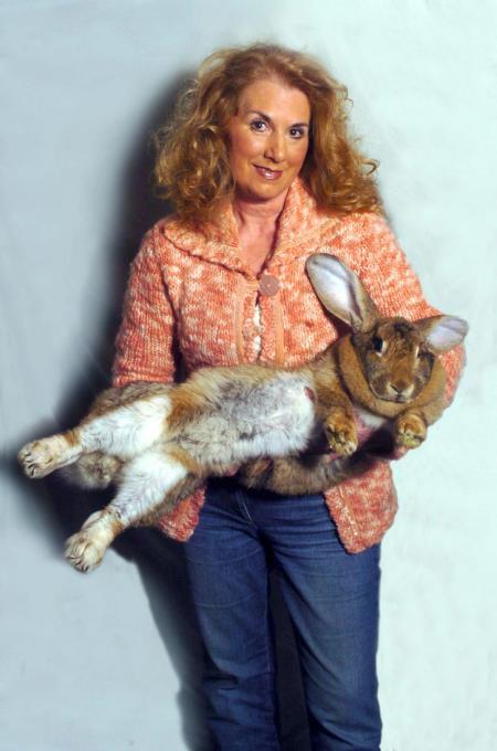 巨大なウサギさんたちの写真