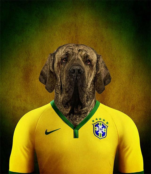 その国の犬に置き換えたポートレート写真
